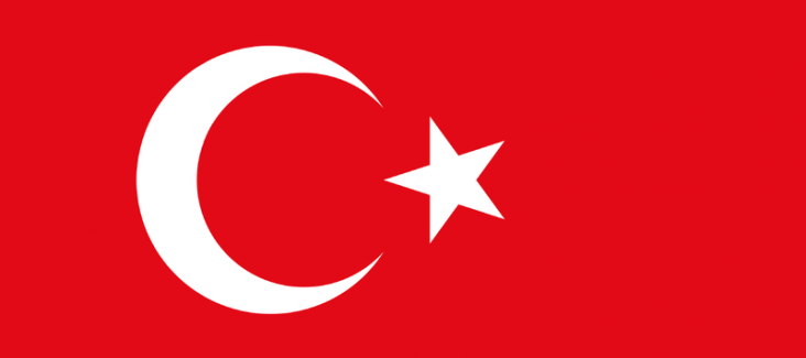 Flag of Turkey (Source: public domain)