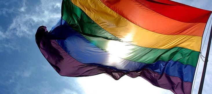 Rainbow flag. Image by Ludovic Bertron